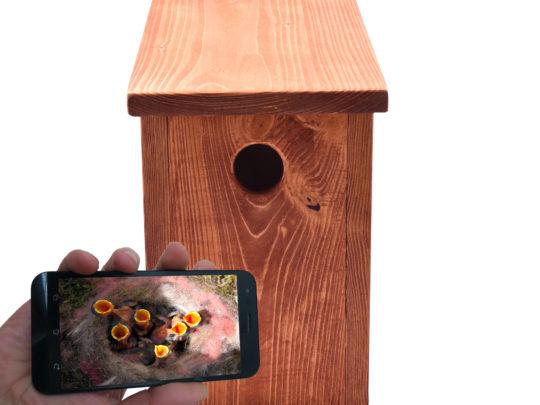 Premium Nistkasten mit Full HD WLAN IP Kamera